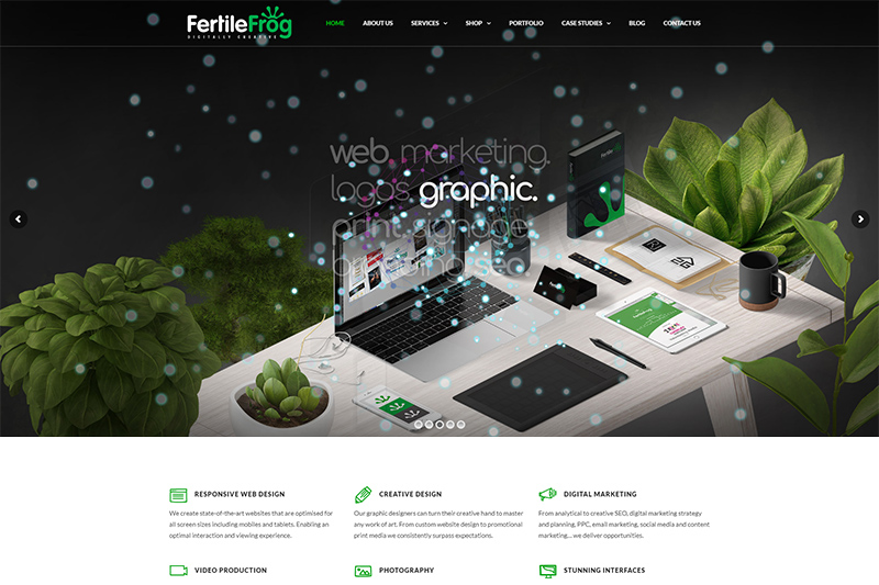 Fertile Frog web design Lancashire