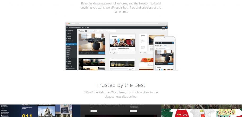 Best website builder - WordPress CMS